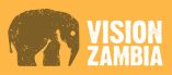 Please Donate to VisionZambia